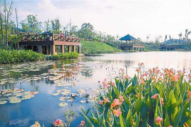 人居环境和特色产业两手抓 三亚梅村内外兼修打造美丽乡村