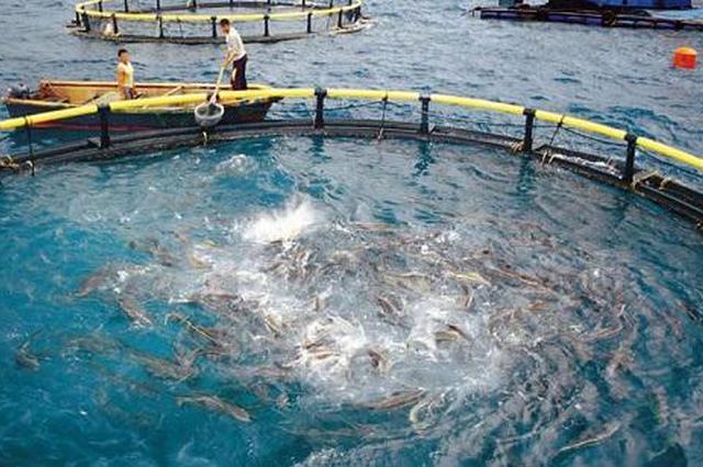 """做好""""水""""文章 海南发布水产养殖尾水排放地方标准"""