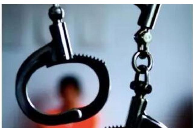 海南二中院公开宣判临高28人涉黑案 首犯被判死刑