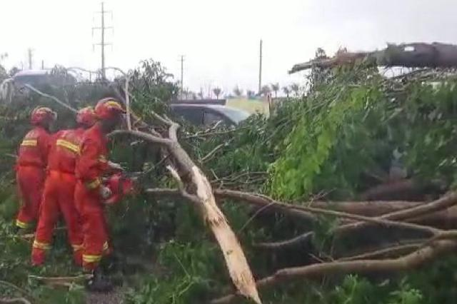 """大风刮倒大树""""掩埋""""小车一人被困 海口消防迅速救援"""