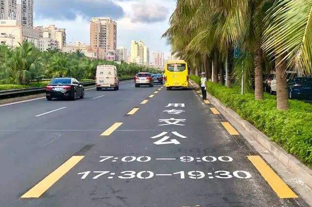 海口拟新建两条公交专用道 交通部门征集市民意见