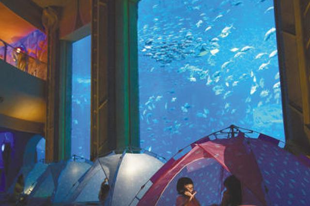 海南高端酒店亲子产品层出不穷 推陈出新热战暑假