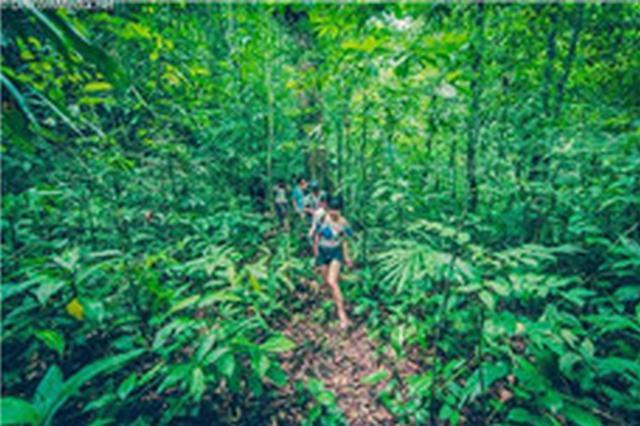 海南热带雨林国家公园建设工作专题会议召开 李军主持