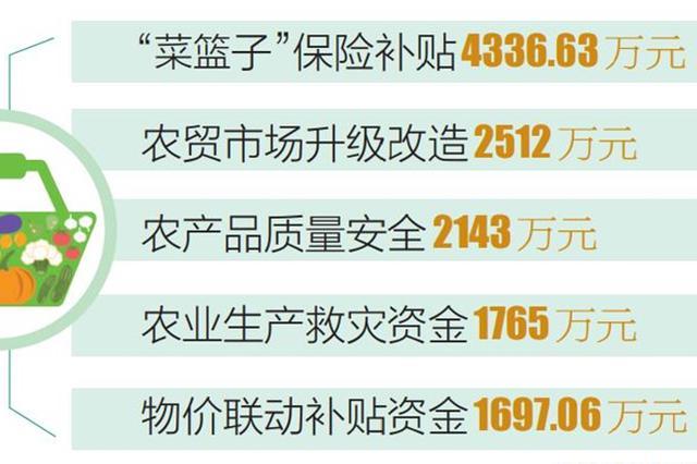 """海南省整合资金支持""""菜篮子""""工程建设 保供稳价"""