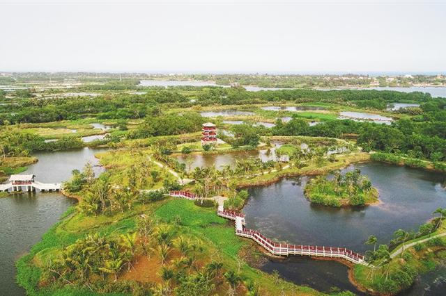 海南:乡村振兴持续推进 农村面貌不断改善