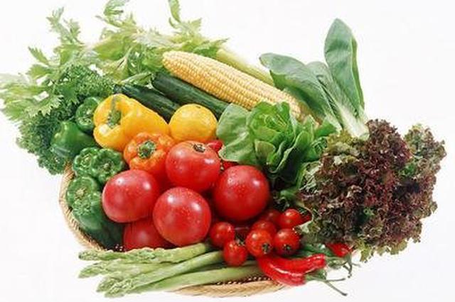 东方计划种植冬季瓜菜40万亩 已有小批量瓜菜收摘上市