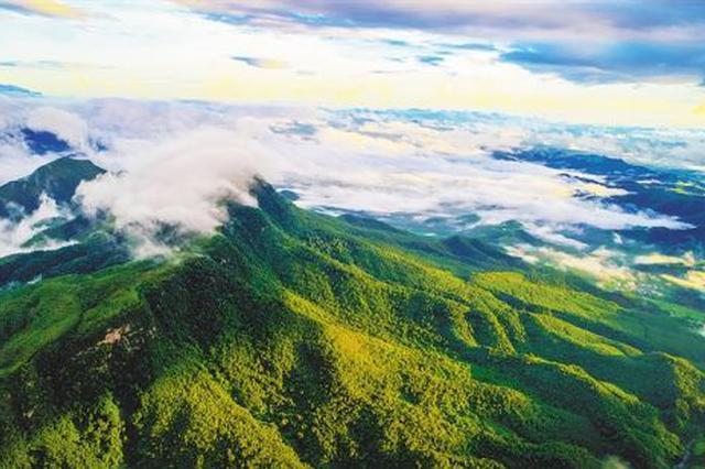 聚焦生态保护:扎实推进国家生态文明试验区建设