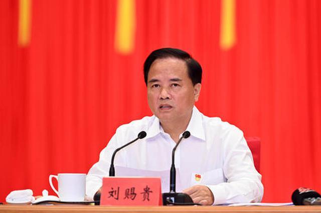 海南代表团全体会议 刘赐贵为团长 沈晓明许俊为副团长
