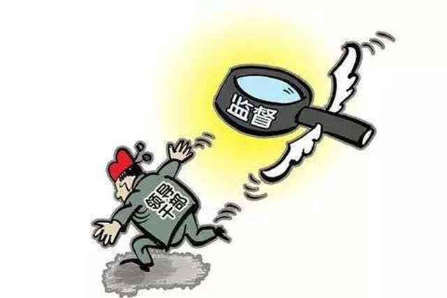 违规发放春节福利,三亚桶井村党总支部书记被处分
