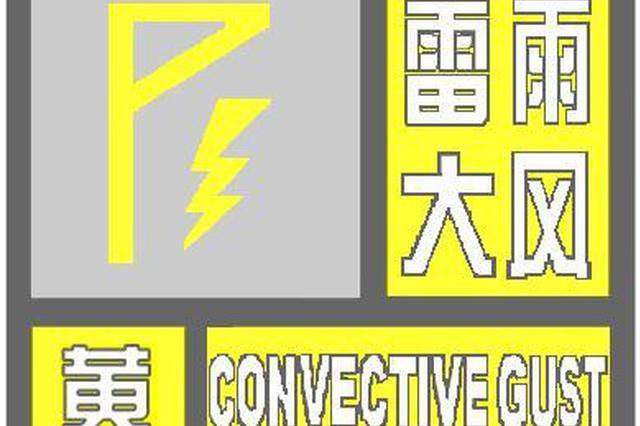 强降水+强雷电!海口市发布雷雨大风黄色预警