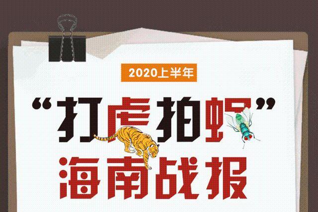 """2020上半年海南""""打虎拍蝇""""战报来了!"""