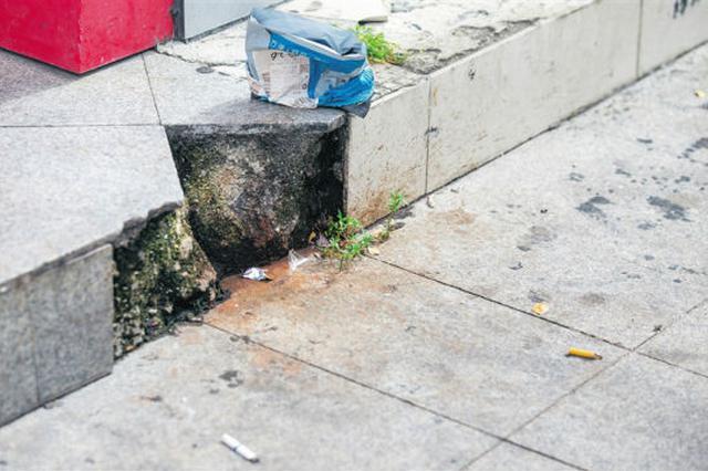 三亚多条街道共享单车乱停放 烟头纸屑随意丢(图)