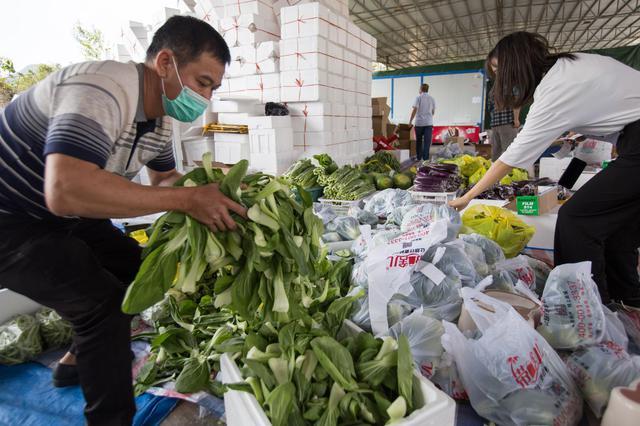 海南冬季瓜果菜畅销全国180个大中城市