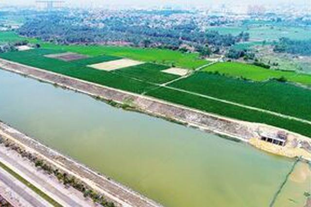 东方罗带河生态修复显成效 如今水清河畅岸绿景美