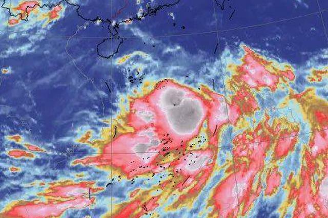 """海南继续发布台风四级预警 台风""""红霞""""将在这一带沿海登陆"""