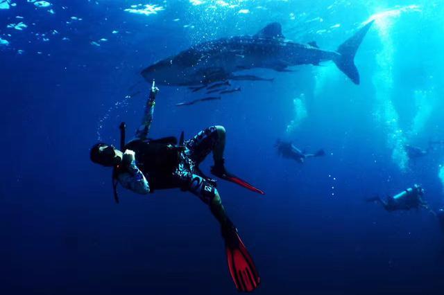 三亚陵水潜水体验、低空飞行旅游项目受游客追捧