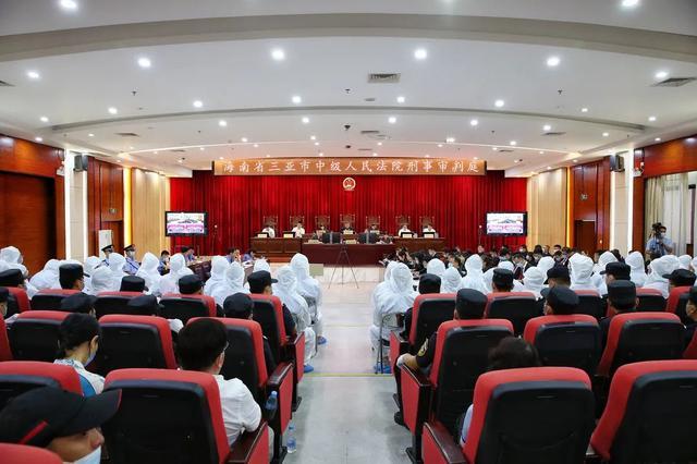 三亚中院宣判刘某鸯涉黑案,49人获刑!