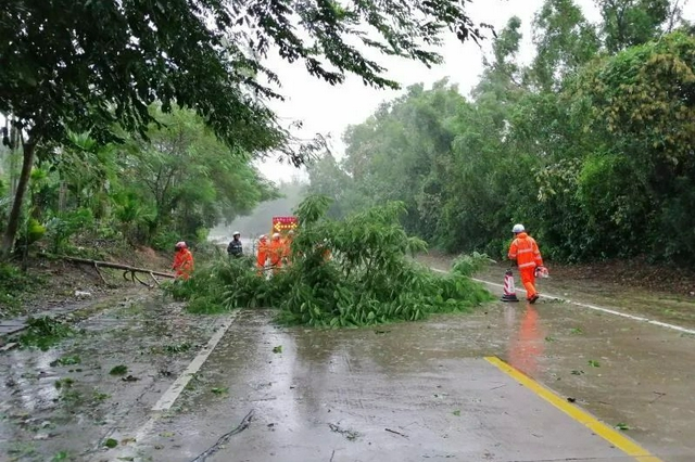 受台风影响,海南多地进出港航班取消、公交线路停运