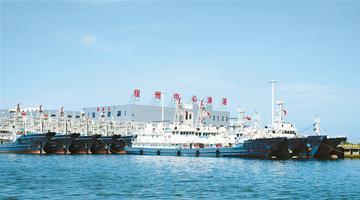 崖州中心漁港:南端大港萬船來往