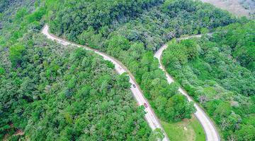 我省今年计划造林绿化10万亩