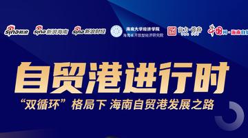 赵晋平:双循环格局下 自贸港发展之路