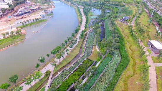 美舍河凤翔湿地公园。资料图