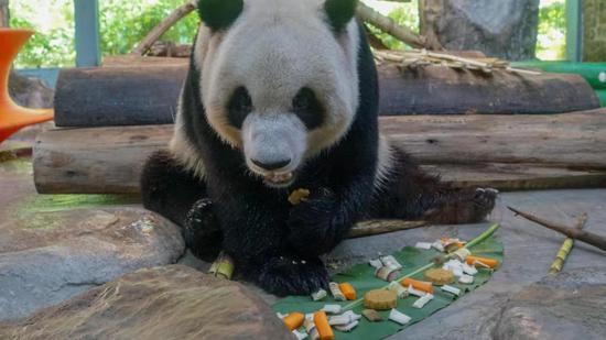 """海南热带野生动植物园推出""""爱在海野、情系中秋""""系列活动"""