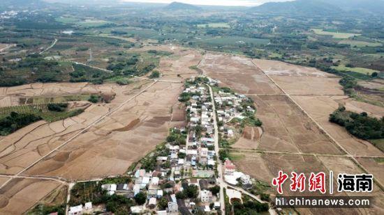 航拍西方村,村中的土地即将播种毛豆。林士杰