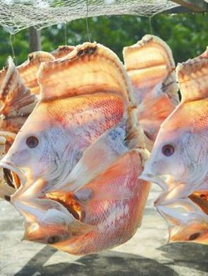 海南人烹调鱼的手法丰富多样