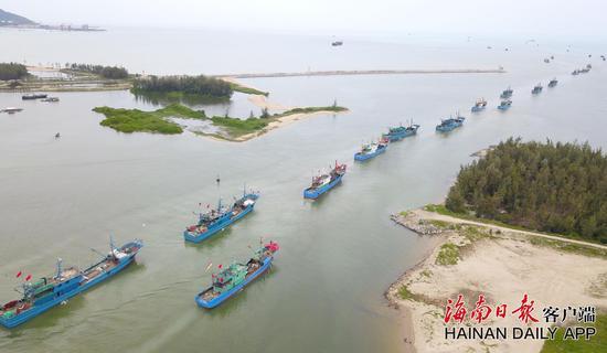 8月16日中午,海南上万艘休渔渔船将逐步恢复生产作业,耕海牧渔。本报记者 武威 特约记者 陈文武 摄