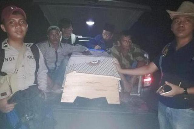 印尼女子遭老虎啃咬惨死 同事全程目睹无力施救