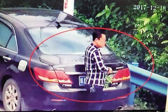 监控下用树叶遮挡号牌 男子被记12分罚千元