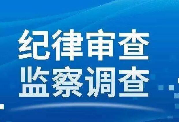 十堰市蔬菜貿易管理服務中心主任楊富漢等2人被調查