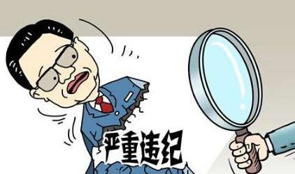 黄冈市能源办原主任霍雅彬接受纪律审查和监察调查