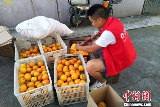沈洲和好友创办公司专门销售农副产品 谭雪姣 摄