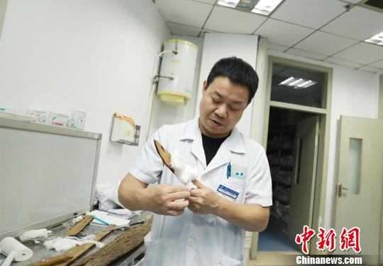 医生用杉树皮制作小夹板 杨丽丽 摄