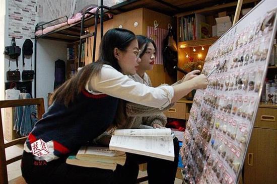 王华君(左)和朱雯燕归类整理药材标本
