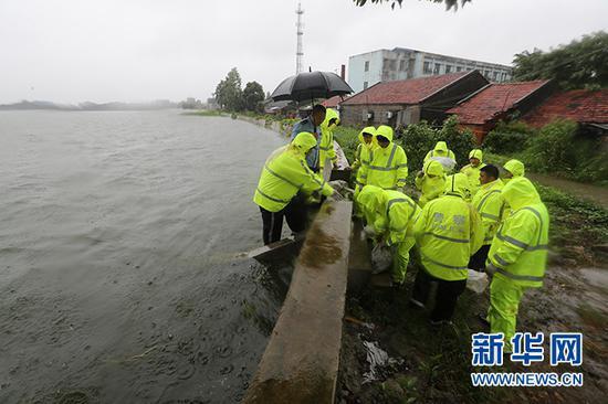 沙洋县公安民警紧急出动加固加高长湖岸堤。新华网发 赵平摄