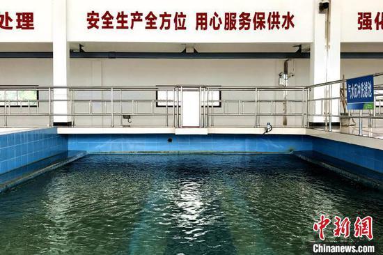 恩施市城区水厂恢复部分产能并开始供水 董晓斌 摄