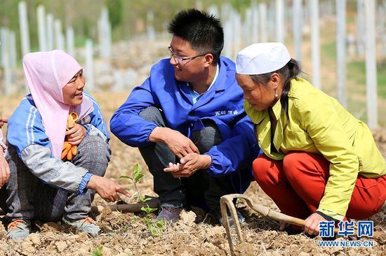 图为翁新强(中)给社员讲授五味子栽植和基地管护技巧(资料图)。新华网发