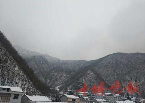 隔着屏幕能感受到丝丝寒意但雪真的太美了有木有。神农架下雪了!