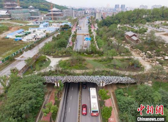 桥墩以襄阳市市花紫薇花树干造型 杨东 摄