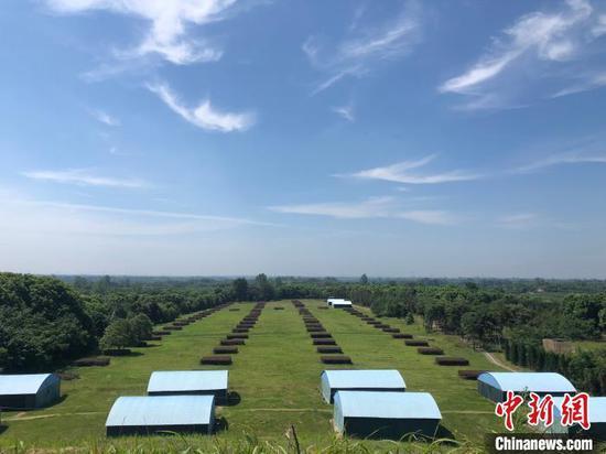 楚王车马阵景区是现已发现的保存最好、规模最大、布局最为完整的周代楚王陵陵园。 梁婷 摄
