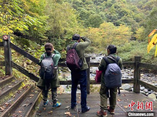 观鸟队员3人一组对鸟类进行观察记录。 周星亮 摄