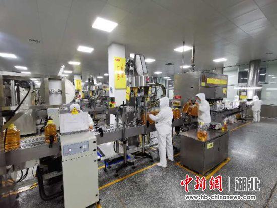 """襄阳襄州释放近10亿""""活水""""助力企业达产满产"""