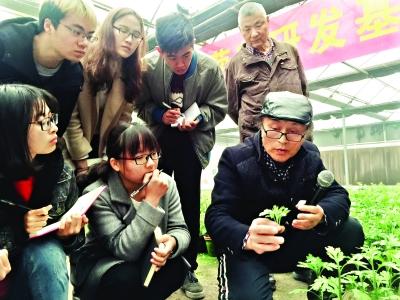 李建祥正在向同学们讲解菊花扦插技巧   记者王亚欣 摄