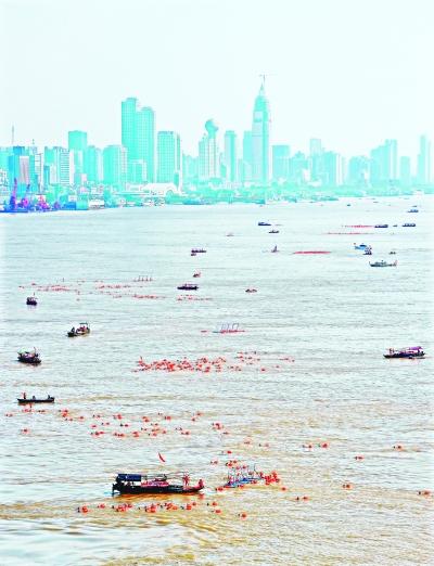 7月16日,武汉渡江节,参加横渡的选手在长江上形成一道风景 记者许魏巍 摄
