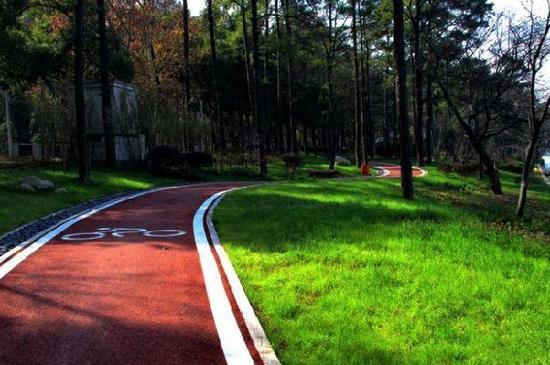 """武汉东湖绿道二期12月28日开放 与一期""""无缝""""成环"""