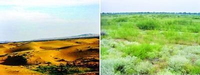 达拉特旗荒漠化综合治理试验站治理前景观,左拍摄于2001年记者 胡冬冬 翻拍