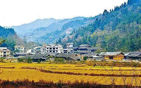 """今年4月,还被国家民委授予""""中国少数民族特色村寨""""称号。湖北省旅游名地杨梅古寨就位于这个村落。"""